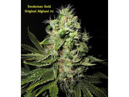 Original Afghani #1 Regular Cannabis Seeds