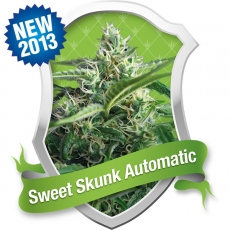 Sweet Skunk Automatic Feminized Marijuana Seeds