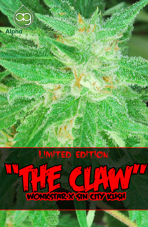 The Claw Regular Cannabis Seeds